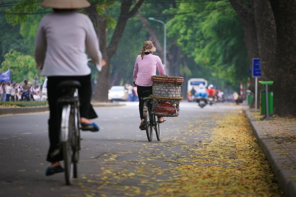 vélos boulevard