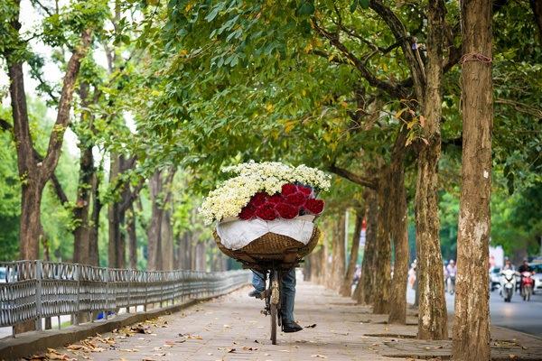 vendeuse de daisy hanoi