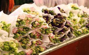 fleurs bien couvert au marche quang an a hanoi