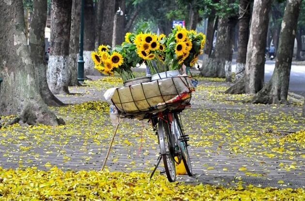 vendeur fleurs lac hoan kiem